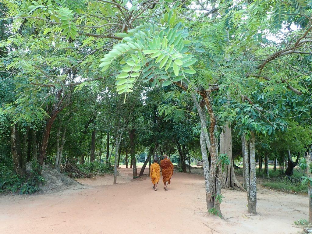 Siem Reap, Banteay Srei